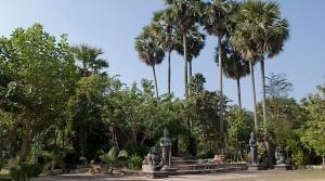 Land in Siem Reap