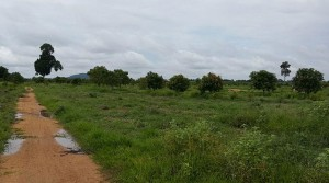 Land for sale in Kompong Thom