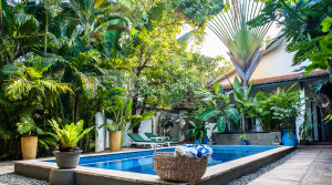 Business for Sale in Siem Reap